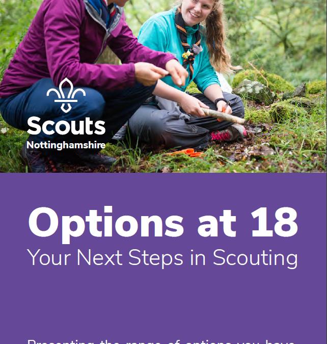 Options at 18
